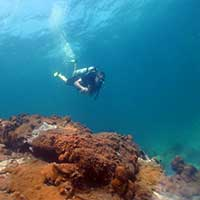 Koh Rin Coral Reef Dive Site - Pattaya Thailand