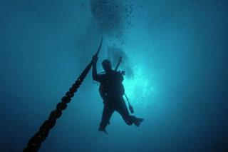 Specialty Deep Diver Advanced Padi Dive Courses